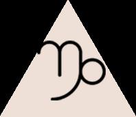 Bricjapi (23 dhjetor - 20 janar)